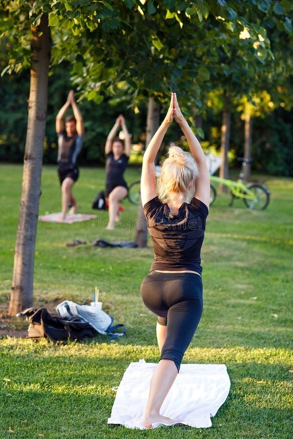 出席瑜伽班外部的大小组成人在公园 库存图片