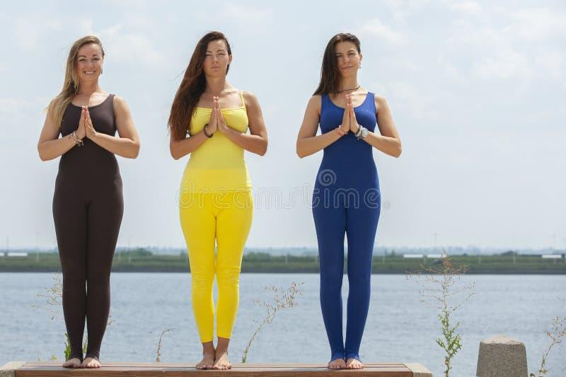 出席瑜伽班外部的小组成人在公园 图库摄影