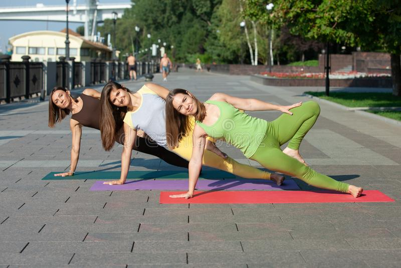 出席瑜伽锻炼的小组妇女在公园 免版税库存照片