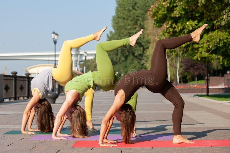 出席瑜伽锻炼的小组妇女在公园 库存照片