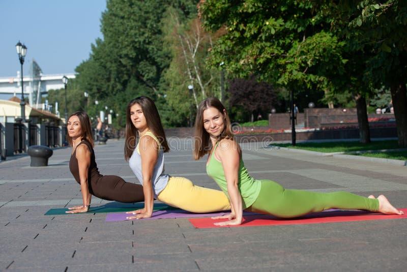 出席瑜伽锻炼的小组妇女在公园 免版税图库摄影