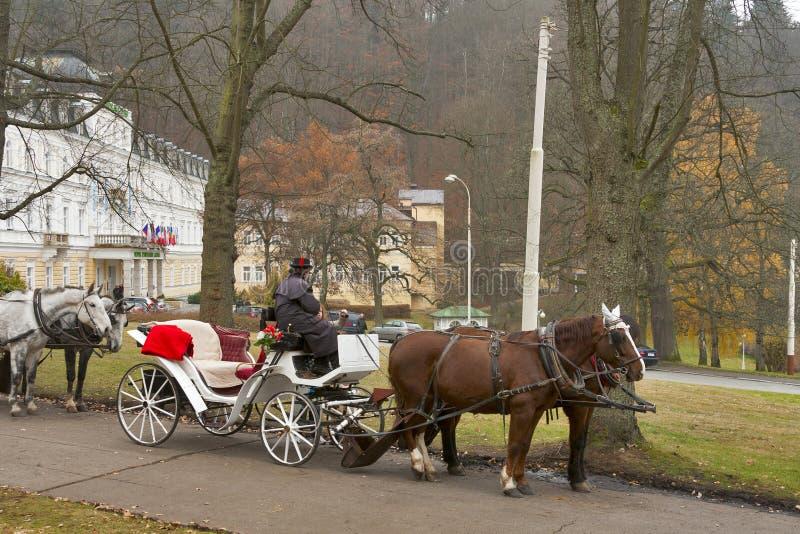 出租车司机在Marianske Lazne,捷克共和国。 库存图片