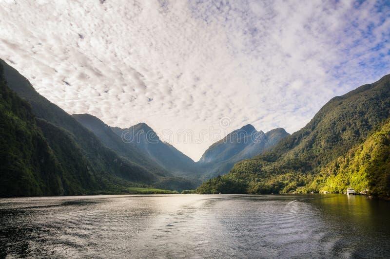 击中船坞的早晨光在半信半疑的声音在新西兰 免版税图库摄影