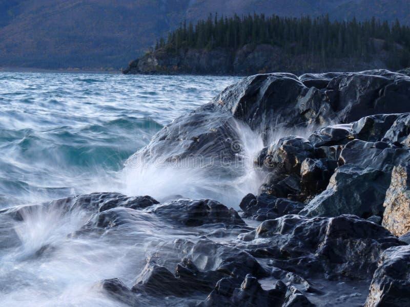击中Kluane湖岸的通知 免版税库存照片