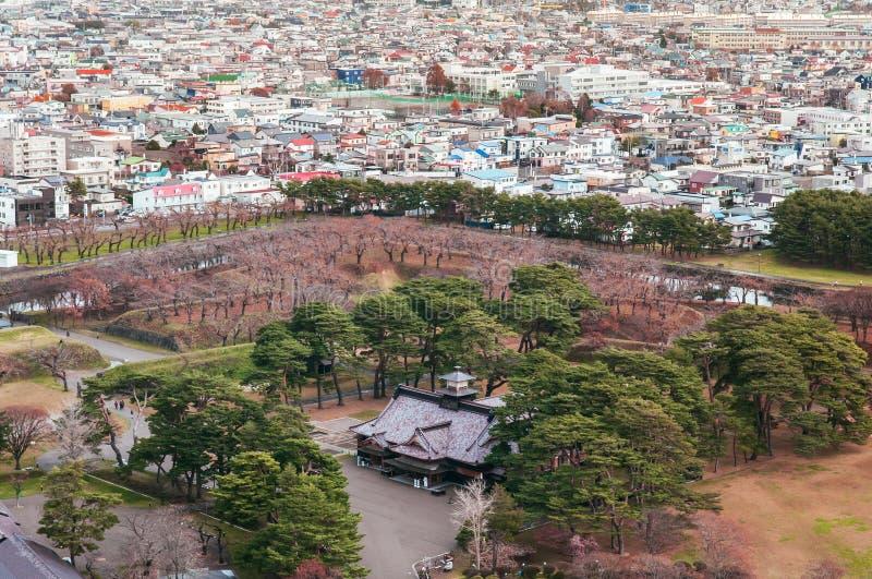 函馆市和Goryokaku防御塔,鸟瞰图 库存图片