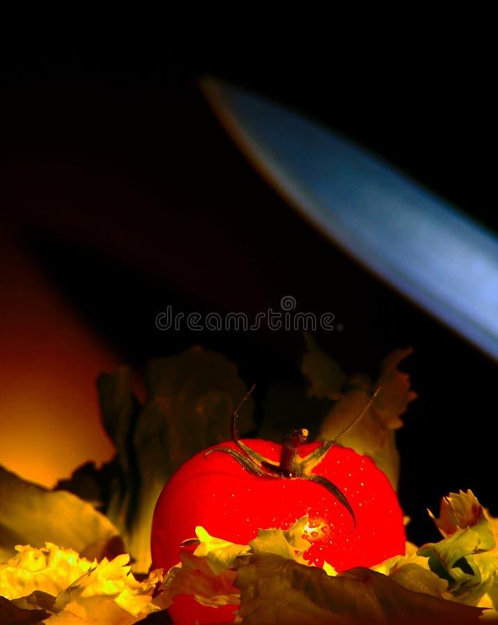 刀子碰撞基于莴苣床的蕃茄  库存照片