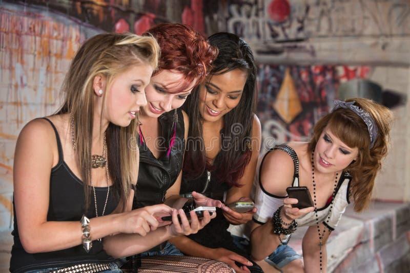 分享手机信息的女孩 免版税库存图片