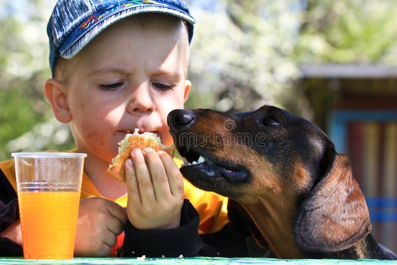 分享曲奇饼的小男孩与狗 免版税库存图片