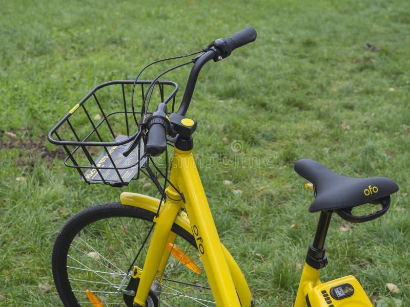 分享的租务黄色自行车由在smar的流动app开锁 免版税库存照片