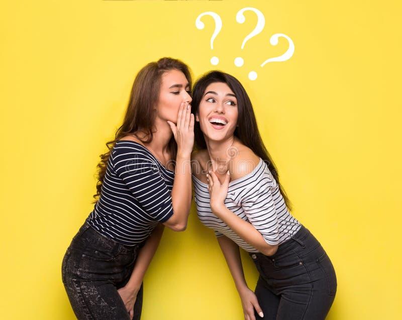 分享秘密的两名妇女与拉长的问号 库存照片