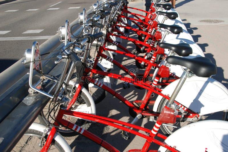 分享驻地的自行车 库存图片