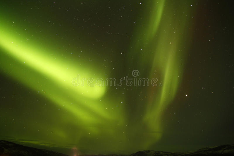 分叉的北极光 库存图片