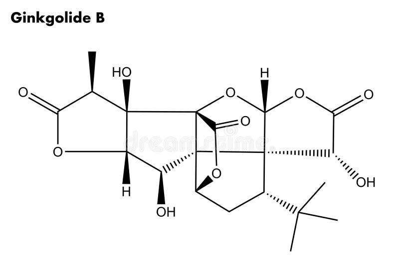 分子结构Ginkgolide B (银杏树biloba树) 库存图片