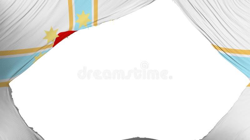 分开的第比利斯市旗子 库存例证