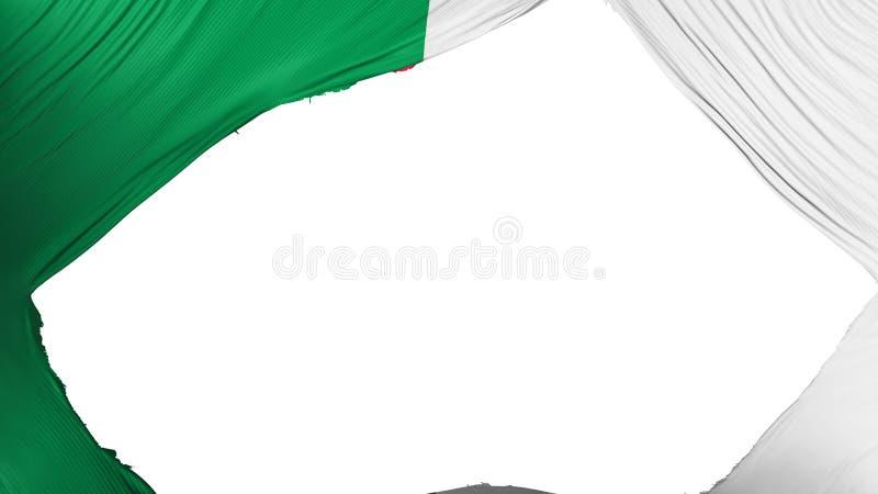 分开的阿尔及利亚旗子 向量例证