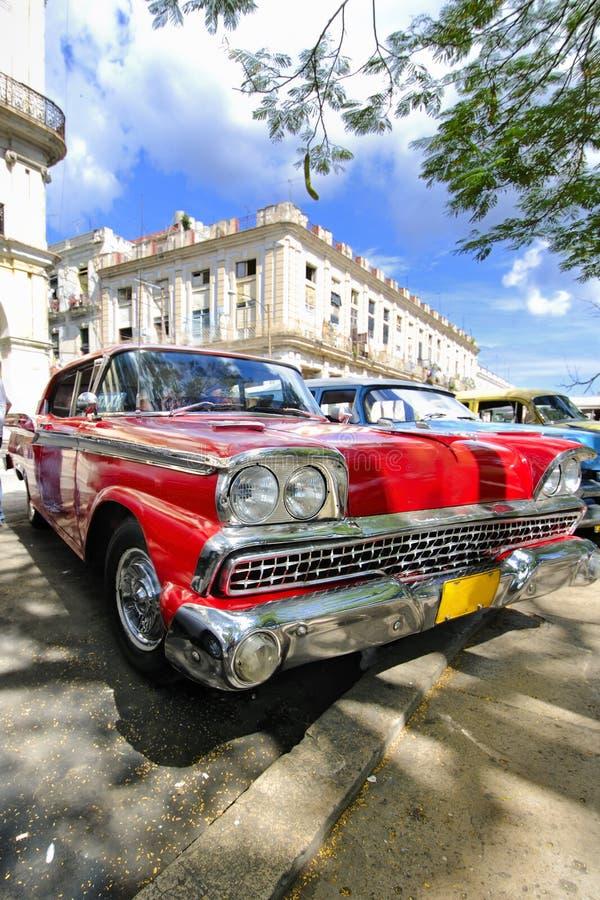 分支汽车古巴哈瓦那红色结构树下 免版税库存图片