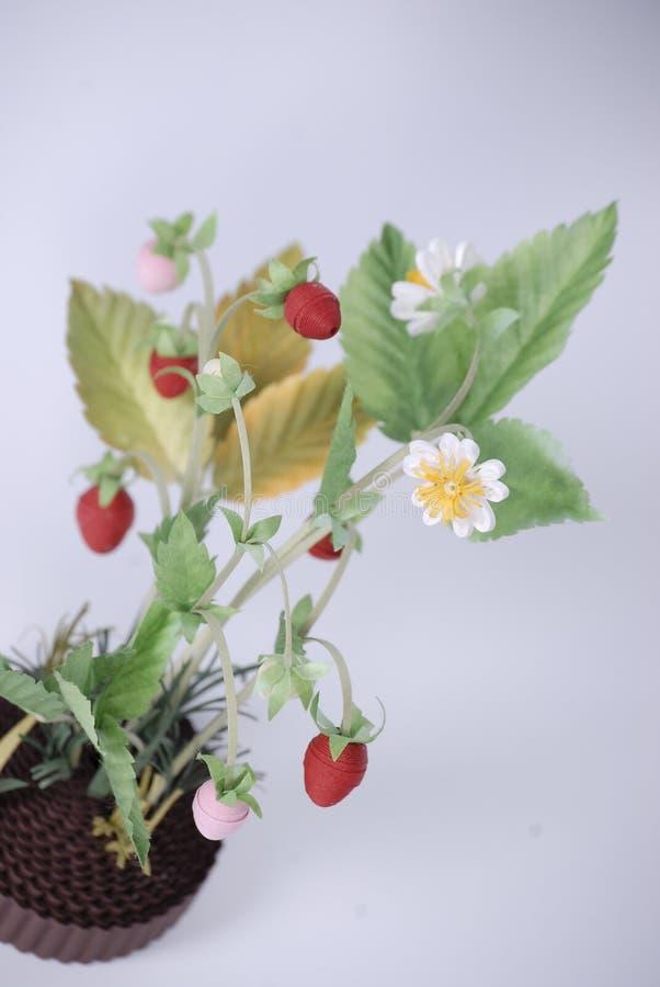 分支草莓 库存照片