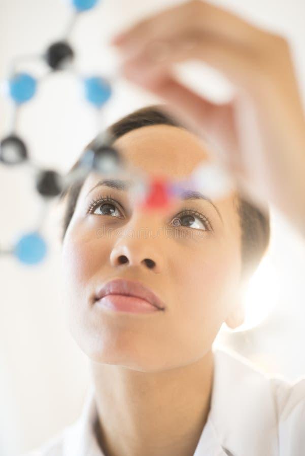 分析分子结构的女性研究员在实验室 库存图片