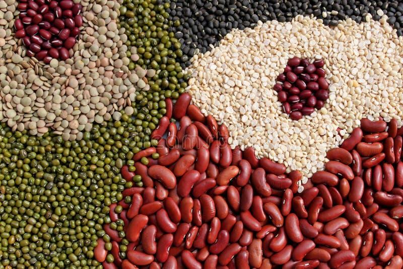 分类豆豆类 库存照片