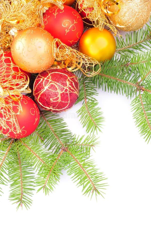 分行圣诞节金杉木粉红色 免版税图库摄影