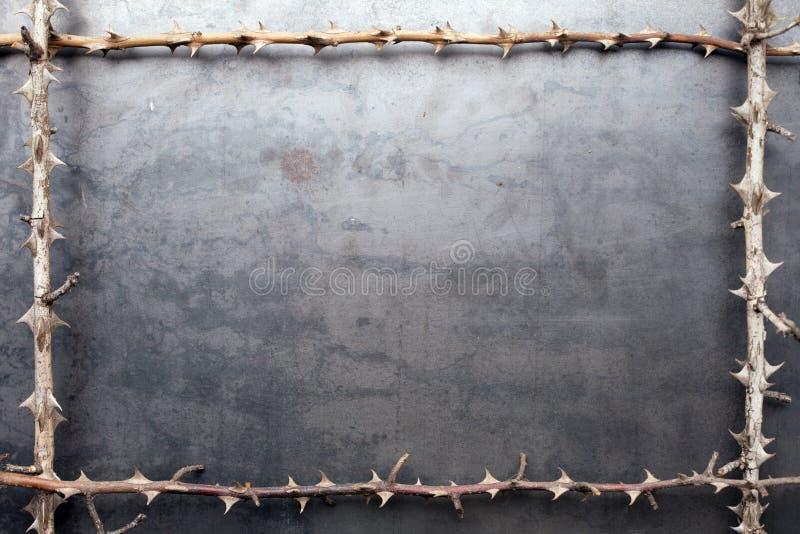 分行烘干框架金属多刺的纹理 库存图片