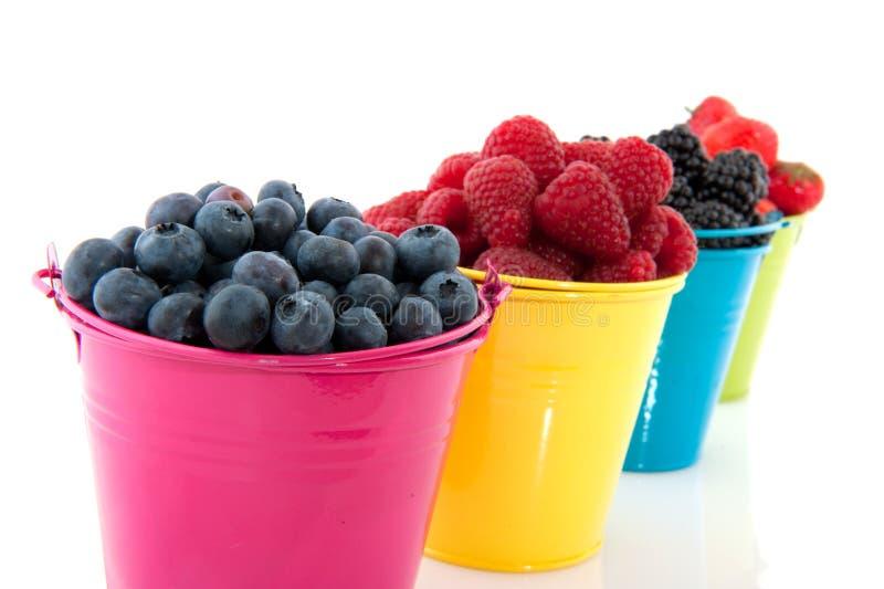 分集新鲜水果 免版税库存图片