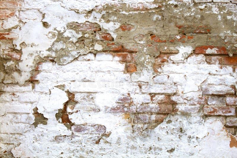 切削,剥在老红砖墙壁上的白色油漆 免版税库存图片