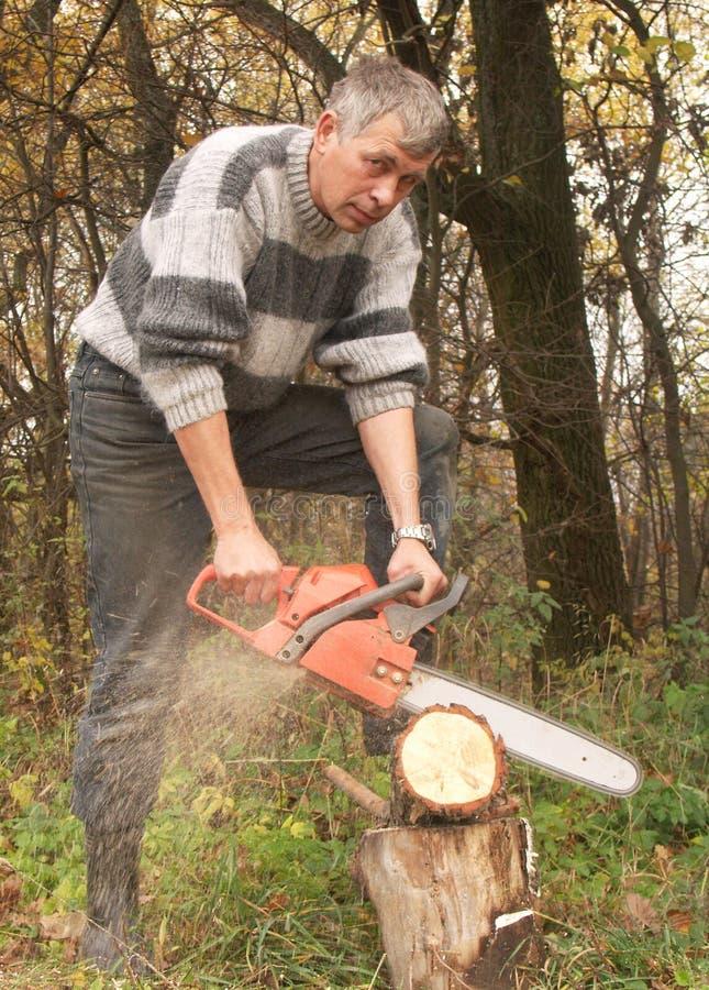 切割工木头 图库摄影
