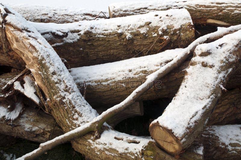 切好的火日志记录木头 免版税库存图片