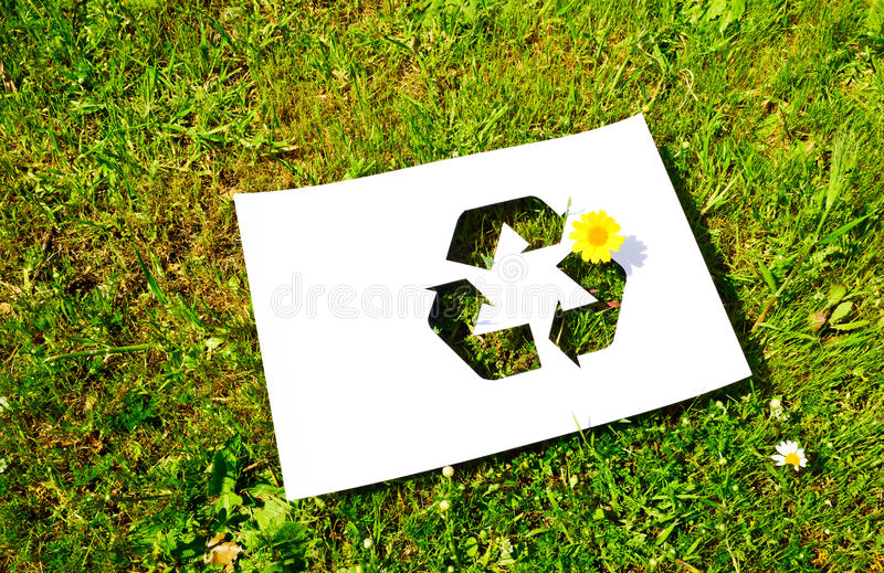 Download 切开纸 库存图片. 图片 包括有 雏菊, 干净, 公共, 纸板, 撕毁, 回收, 环境, 绿色, 起皱纹 - 30337577