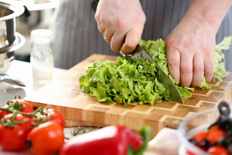 切开绿色新鲜的莴苣成份的厨师手 免版税库存图片
