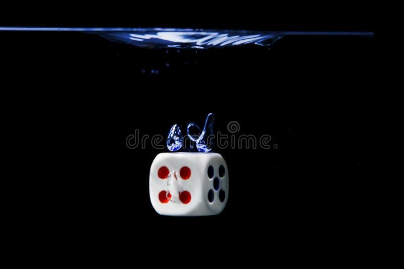 切成小方块与第四面孔在水中有黑背景 免版税库存照片