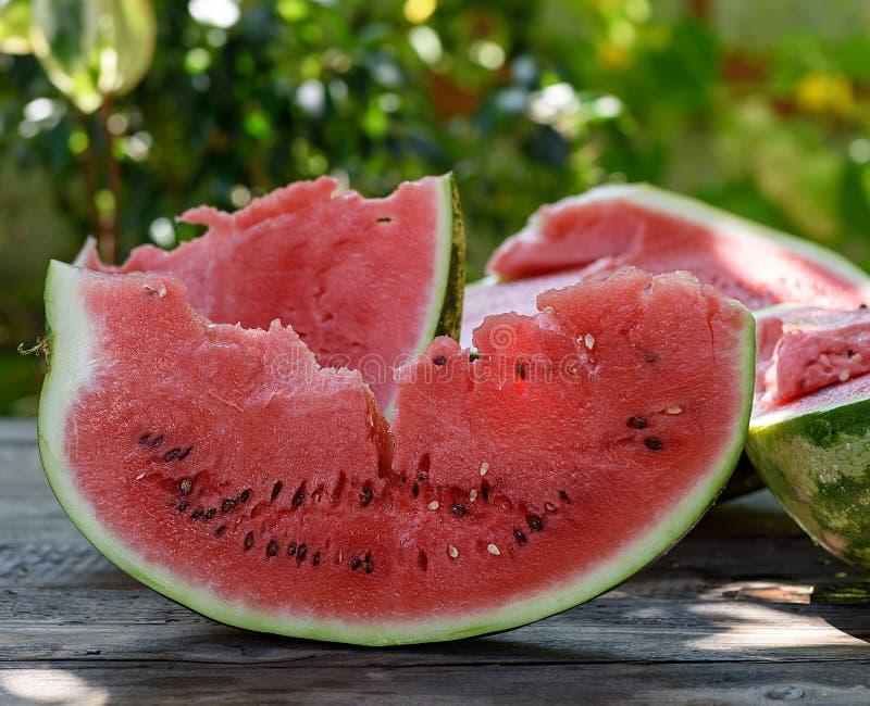 切片与种子的成熟红色西瓜 库存照片