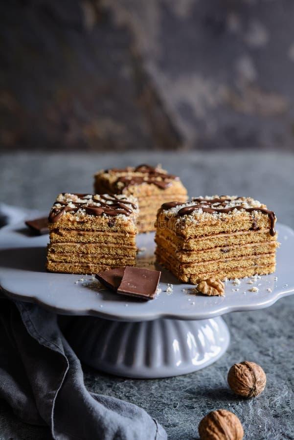 切片传统Marlenka蛋糕 库存照片