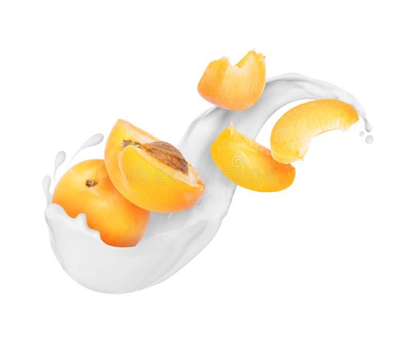 切片杏子用牛奶在白色飞溅被隔绝的特写镜头 免版税库存图片