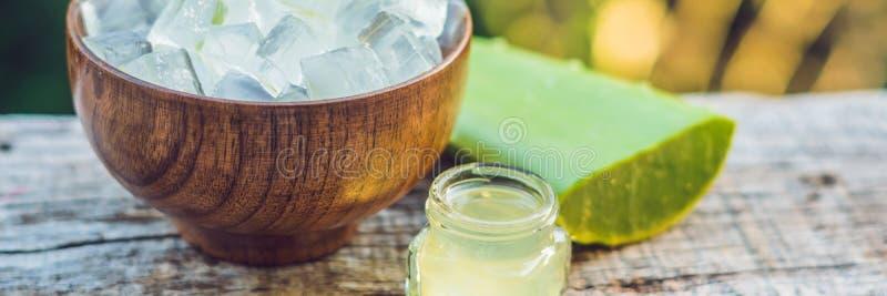 切片芦荟维拉叶子和一个瓶有透明胶凝体的医药目的、皮肤治疗和化妆用品的,关闭横幅 免版税库存照片