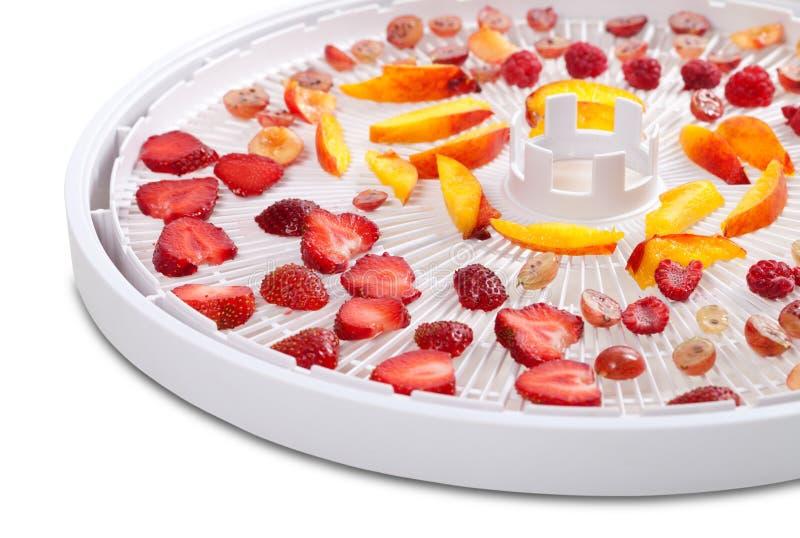 切片莓果和果子在脱水剂盘子 库存图片