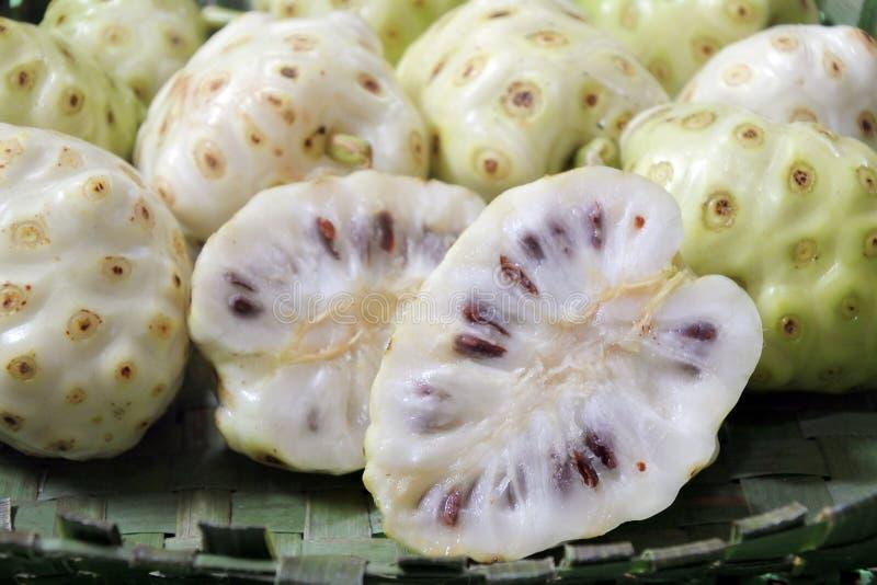 切的乳酪果子Noni果子在拉罗通加库克群岛 免版税库存图片