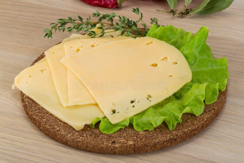 切的切达乳酪 免版税图库摄影