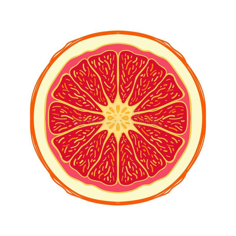 切的色的剪影样式果子红色葡萄柚 库存例证