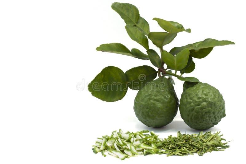 切香柠檬,非洲黑人石灰、水蛭在白色背景和叶子隔绝的石灰或者毛里求斯papeda果子 免版税库存照片