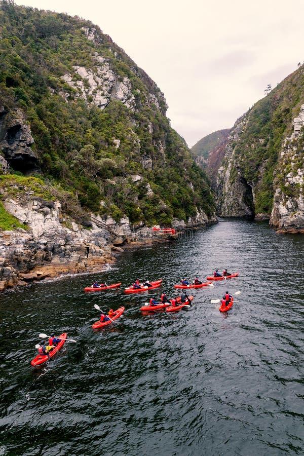 划皮船在河峡谷的小组在Knysna,南非 免版税库存照片