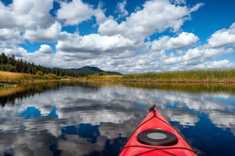 划皮船通过沼泽地和森林在俄勒冈 库存图片