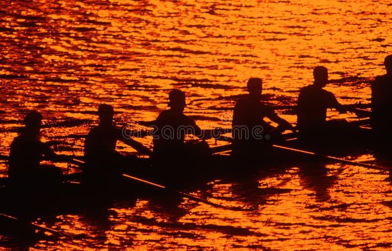 划船乘员组剪影在日落的 免版税库存照片