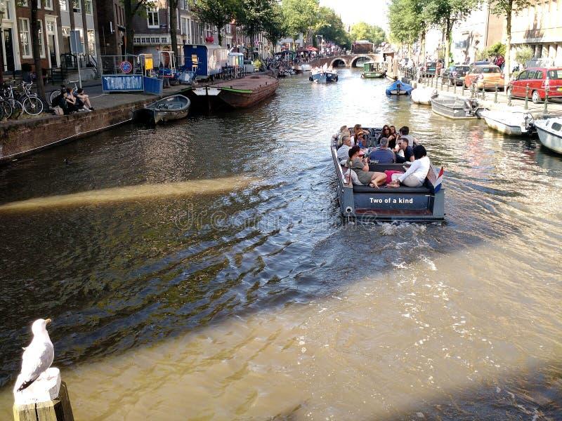 划船在阿姆斯特丹,荷兰 库存图片