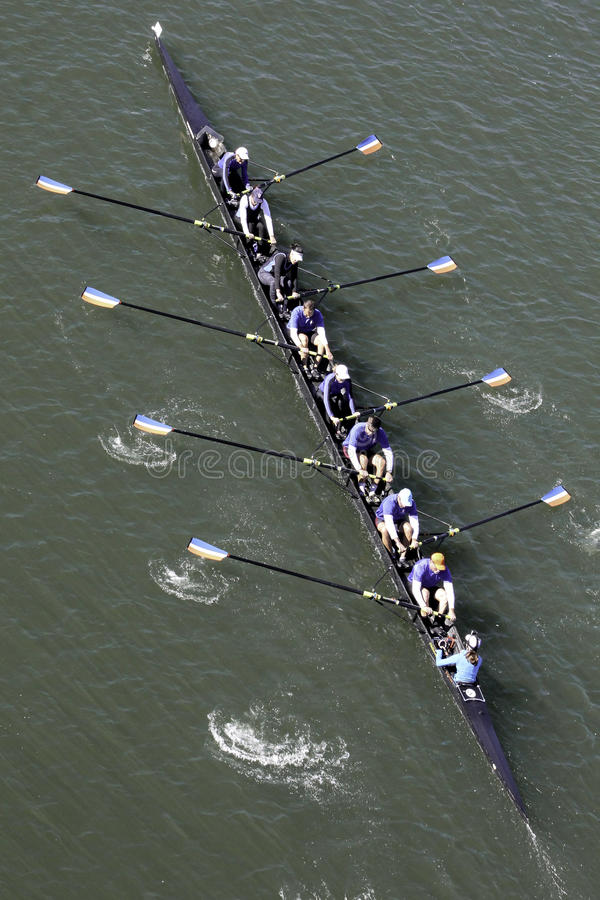 划船队 免版税图库摄影