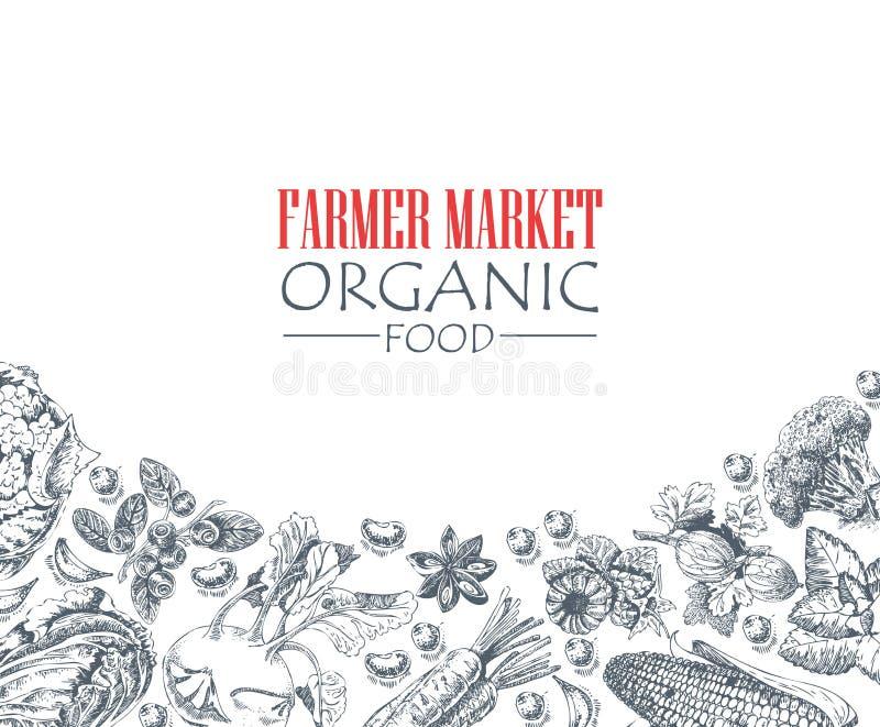 系列-传染媒介水果、菜和香料 农夫市场 自然产品 库存例证