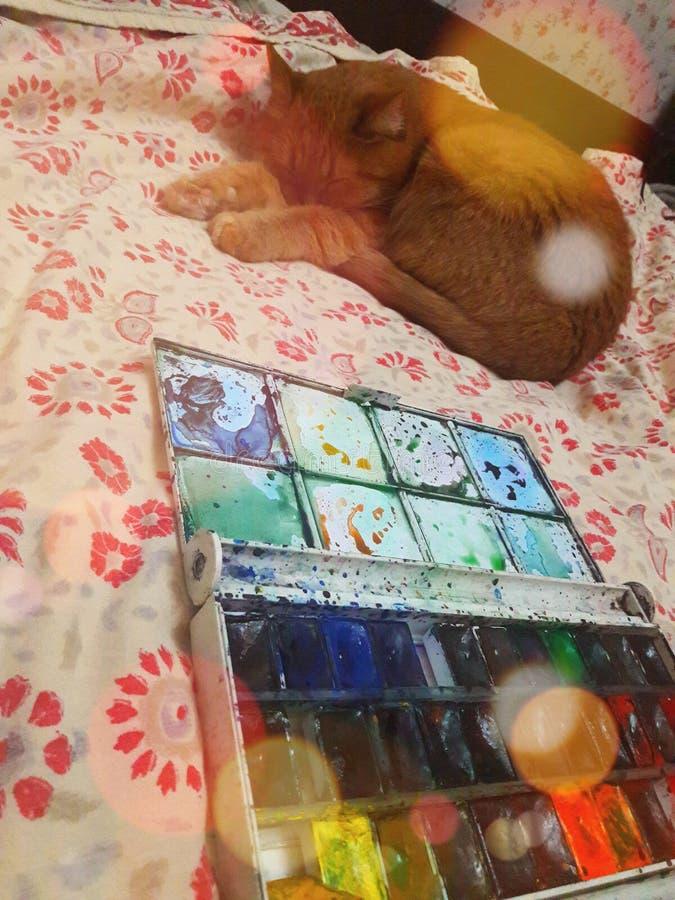 创作过程,我用水彩画画,然后睡一只宠物,一只红猫 圣母与猫 图库摄影
