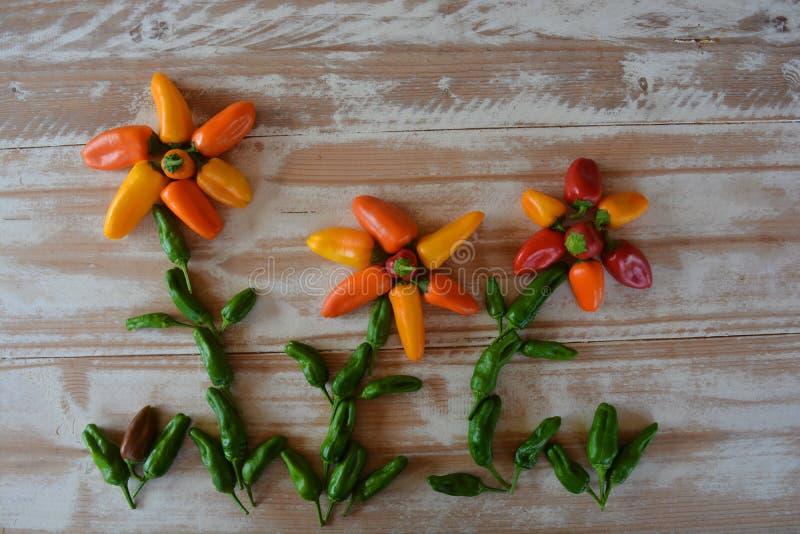 创造性的健康乐趣食物摄影 胡椒 图库摄影
