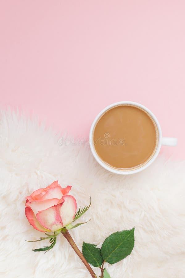 创造性的平的位置顶上的顶视图咖啡牛奶拿铁杯子上升了在千福年的桃红色背景拷贝空间最小的样式的花 秋天 免版税库存图片
